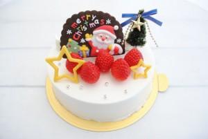 ココット(クリスマス_生1)